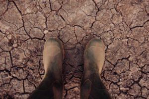 studnie glebinowe